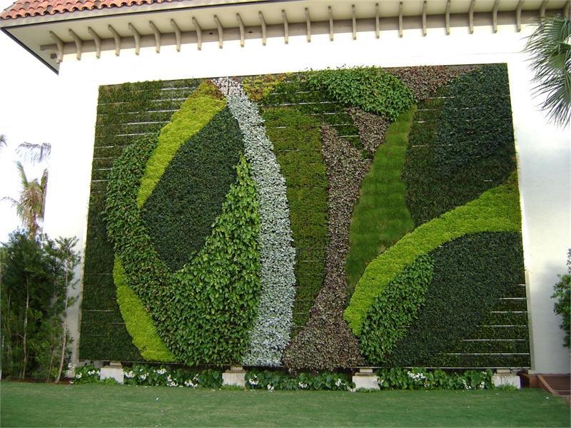 Вертикальное озеленение