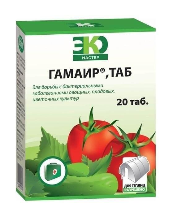 Лучшие сидераты для томатов открытого и защищеного грунта