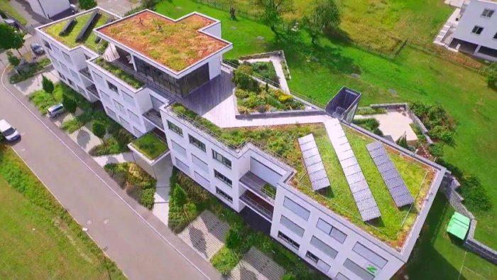 В больших городах все чаще применяется система озеленения не только дворов, но и крыш высоток