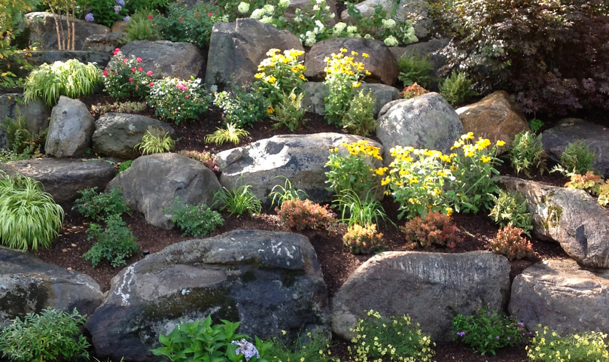 всеми склон с камнями в ландшафтном дизайне фото изгородь