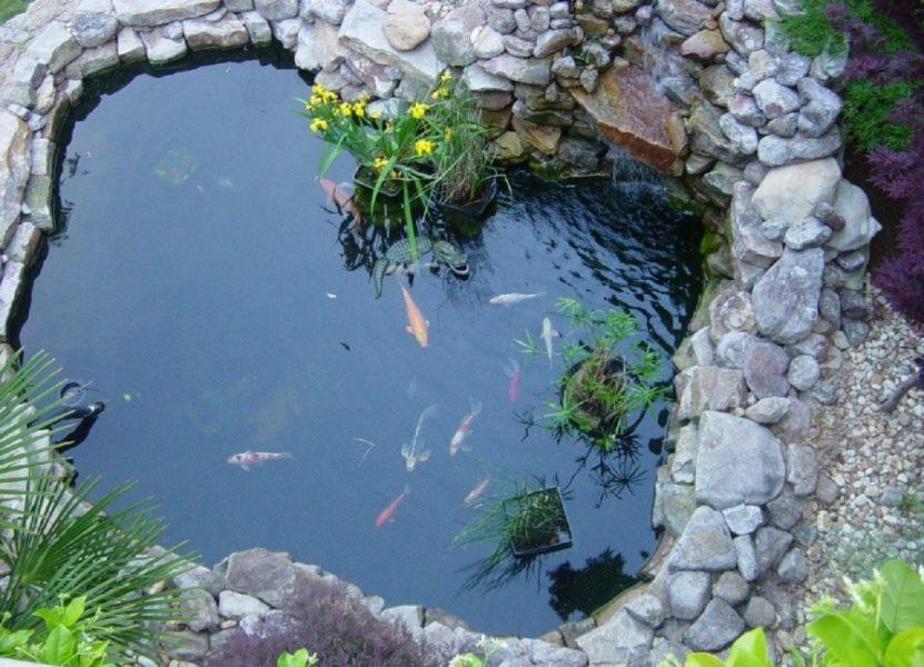 Камень хорошо прогревается на солнце, сохраняет в ночное время тепло для поддержания температуры воды