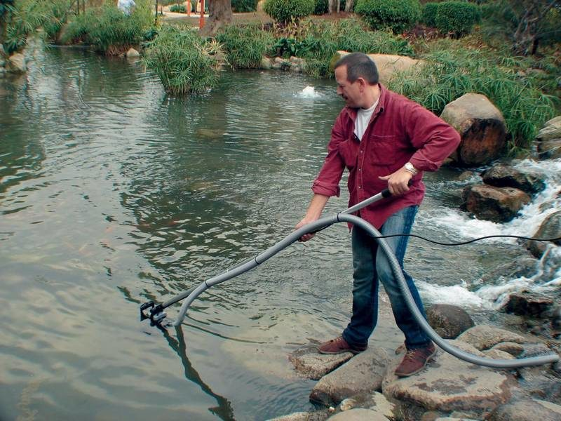 Непроточные и малопроточные водоемы нуждаются в постоянном внимании