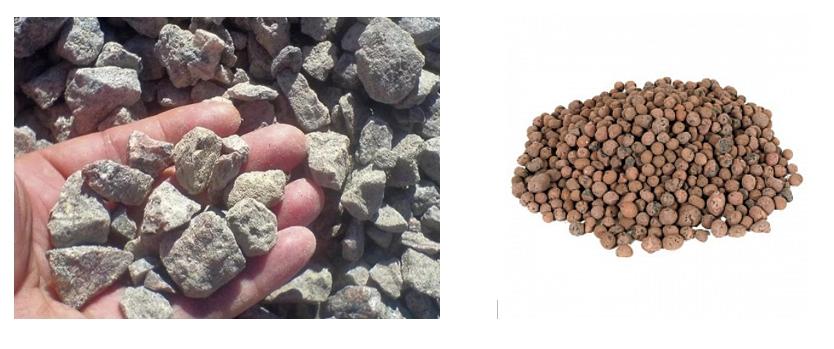 Если грунт плотный и глинистый, то следует добавить в лунки (бороздки) дренаж (керамзит, галька и т. д.), сверху присыпать его слоем земли