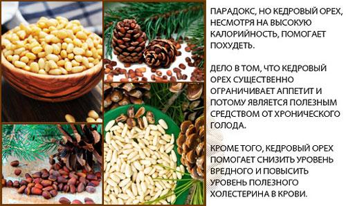 Кедровые орехи не имеют противопоказаний, исключением может быть только аллергическая реакция