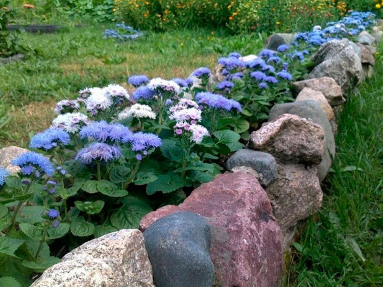При создании рабаток большое значение уделяется окантовке. Она может быть из низкорослых растений. Практичный вариант — кант из бордюрного камня, булыжника, гранита, спилов деревьев
