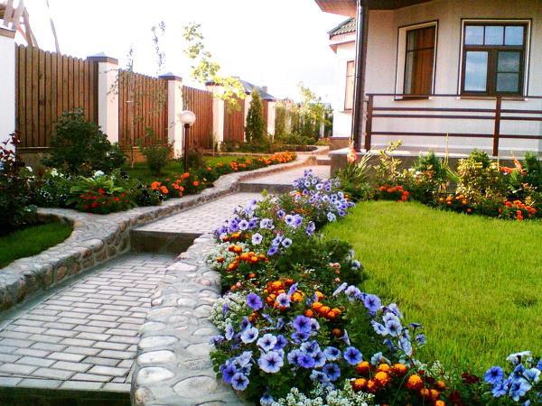 Из петунии и бархатцев можно создать живописный узор с длительным цветением