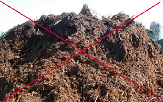 Свежим навозом растения не стоит подкармливать — он слишком «жирный», может повредить корневую систему