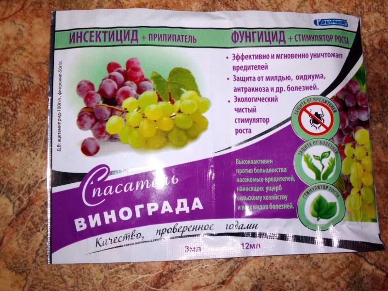 Весной, для профилактики, виноград обрабатывается инсектицидом и фунгицидом