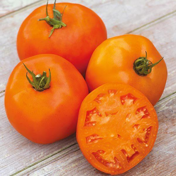 Яркий оранжевый цвет напоминает тропический фрукт - апельсин