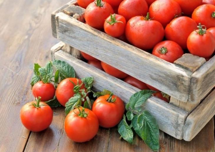Благодаря плотной кожице томаты хорошо переносят транспортировку
