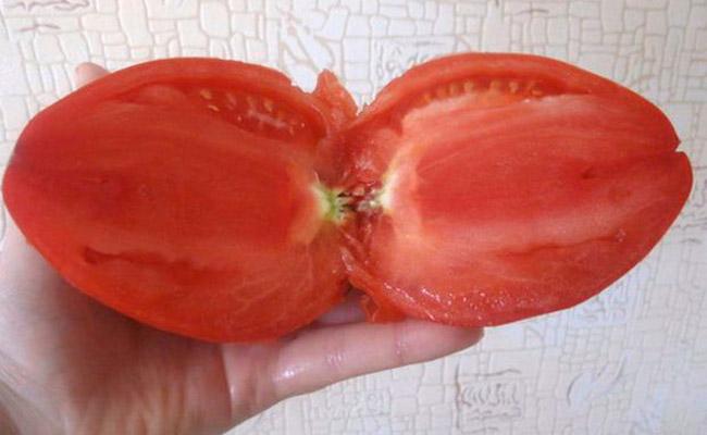 На фото — красный томат Кенигсберг в разрезе