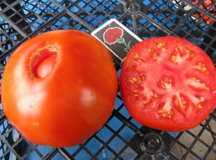 Плоды очень мясистые и сочные, идеально подходят для употребления в свежем виде