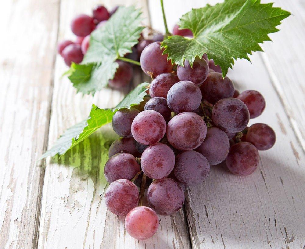 Виды розового винограда включают сорта, подходящие для выращивания в северных регионах