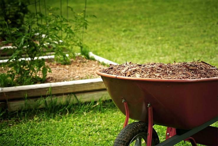 Землевание проводится при помощи сухого компоста и торфа