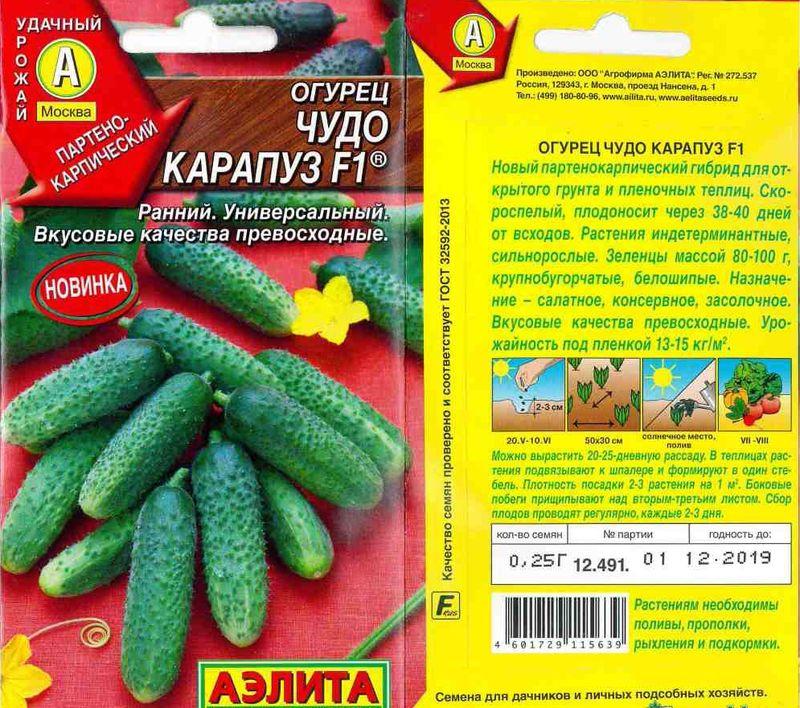 Огурцы могут долго не цвести по причине неправильной подготовки семян или рассады
