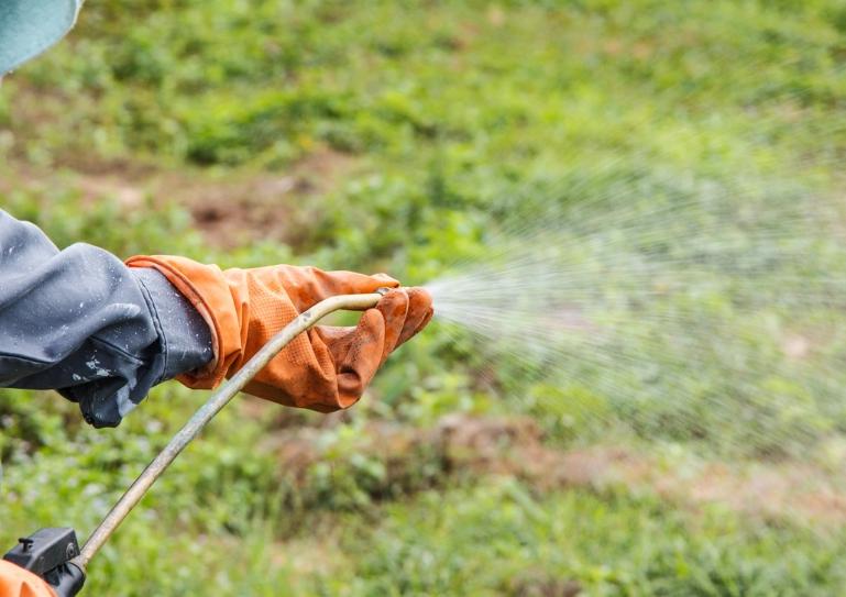 При обработке используйте распылители, чем мельче дисперсия – тем лучше