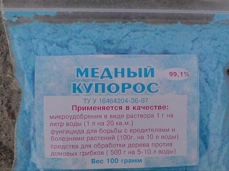Пероноспороз огурцов (ложная мучнистая роса): лечение и меры борьбы