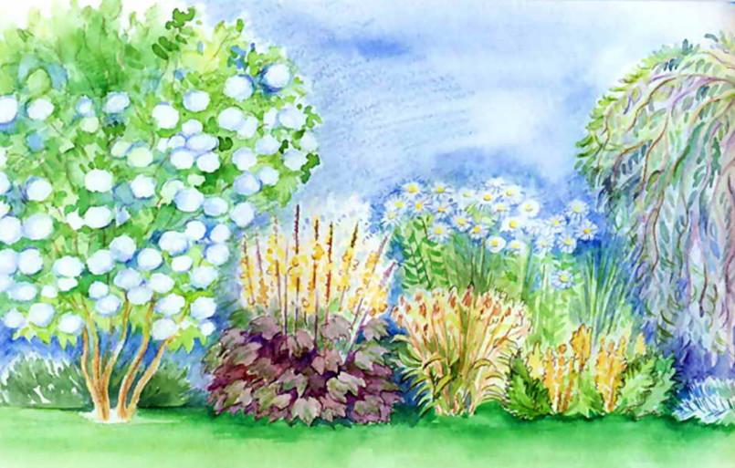 Цветник с освещением с запада с калиной, ивами, полынью и хризантемами