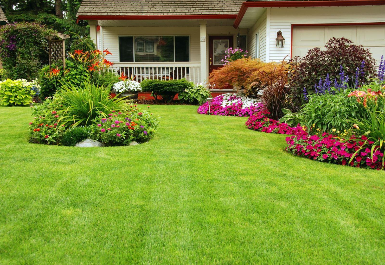 Уход за травой включает: полив, прополку, внесение удобрений и скос
