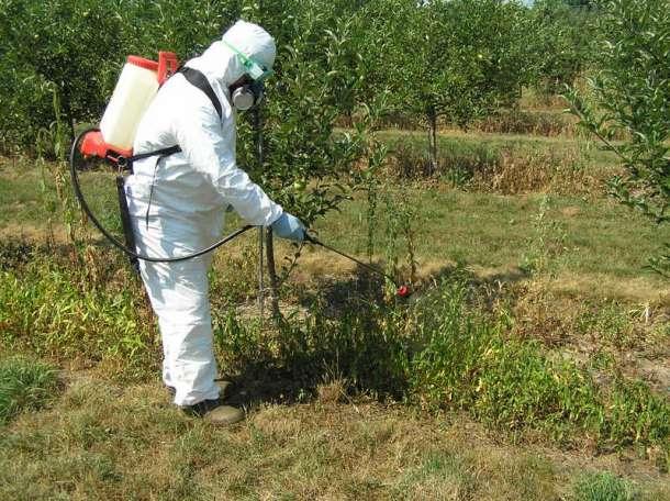 Гербициды — химические препараты, поэтому соблюдение мер безопасности — первое правило при работе с ними. Чтобы сохранить здоровье, надевайте защитную одежду