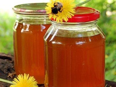 Осот — медонос, мед тягучий, кремового оттенка. Рекомендуется врачами как восстанавливающее средство после респираторных заболеваний, ОРВИ, повышает иммунитет